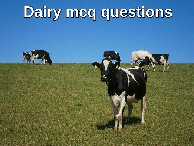 Dairy mcq questions