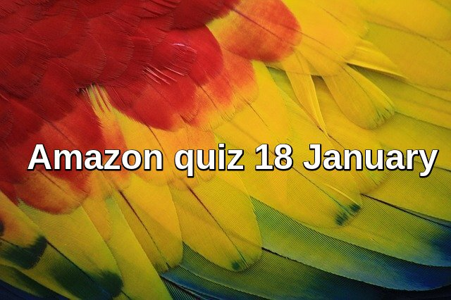 Amzon quiz 18 January